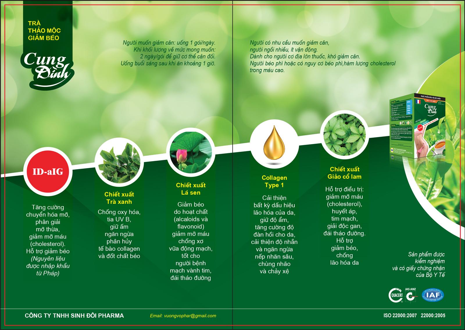 Brochure trà thảo mộc giảm cân cung đình